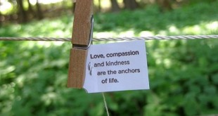 love-compassion-kindness