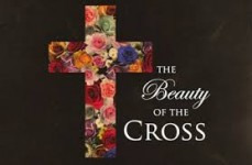 beauty of the cross