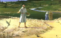 sower and seed
