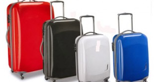 antler_suitcase