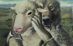 wolf in sheeps clothing sm
