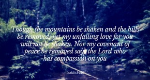 though-the-mountains-be-shaken-and-the-hills-be-removed-yet-my-unfailing-love-for-you-will-not-be-shaken-nor-my-covenant-of-peace-be-removed-says-the-lord-who-has-compassion-on-you